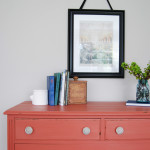 A Springtime Salmon Dresser