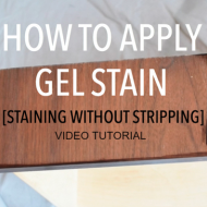 Gel Stain Video Tutorial (Staining without Stripping)
